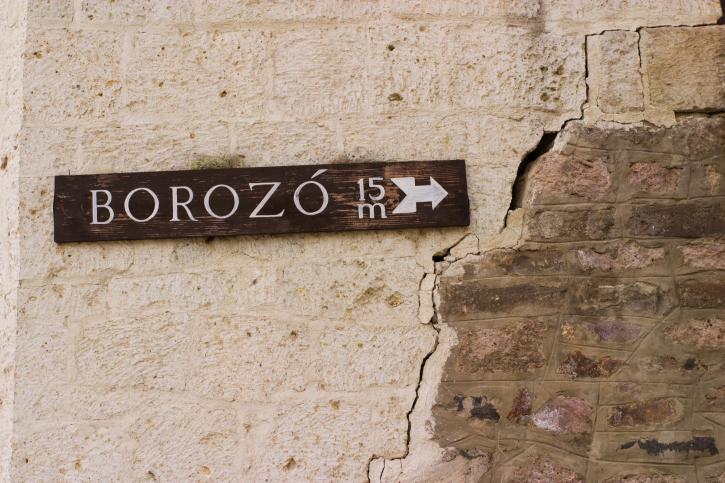 Borozo