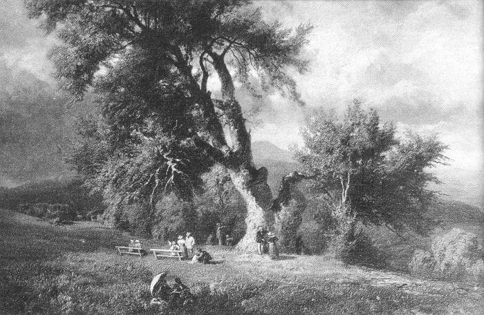 Normafa_Keleti_Gusztáv_1834-1902