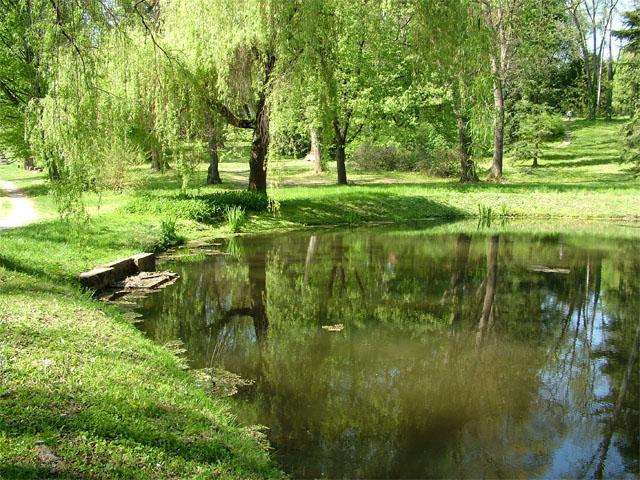 Budafai_Arboretum