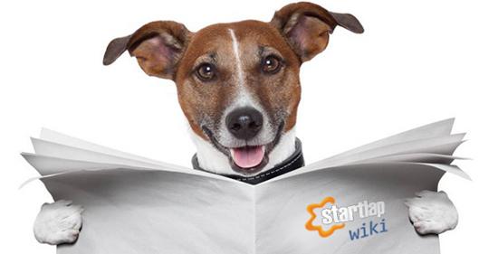 Wiki Kutya 2