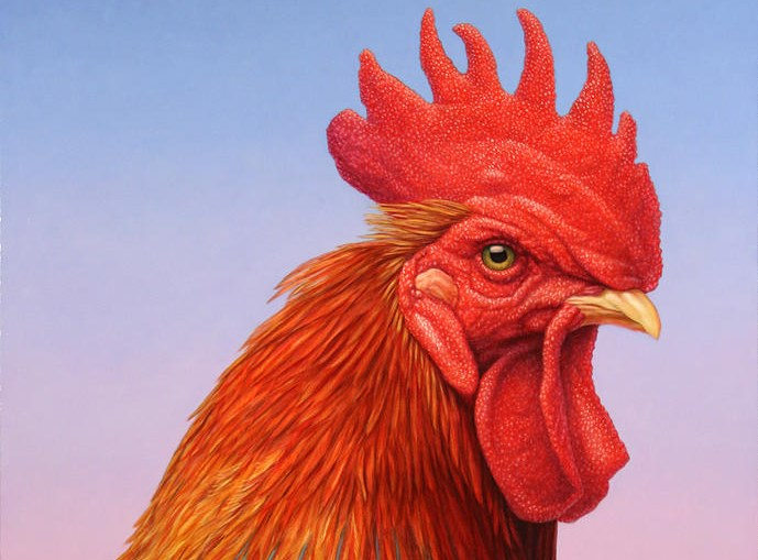 James W Johnson: Big Red Rooster