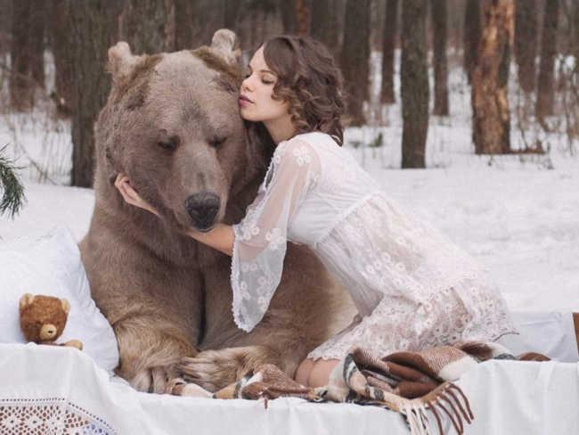 medve01